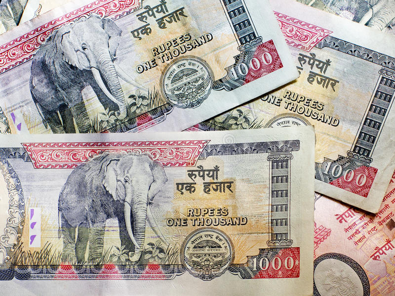 Nepalese banknotes. 1000 Rupees. Background royalty free stock images