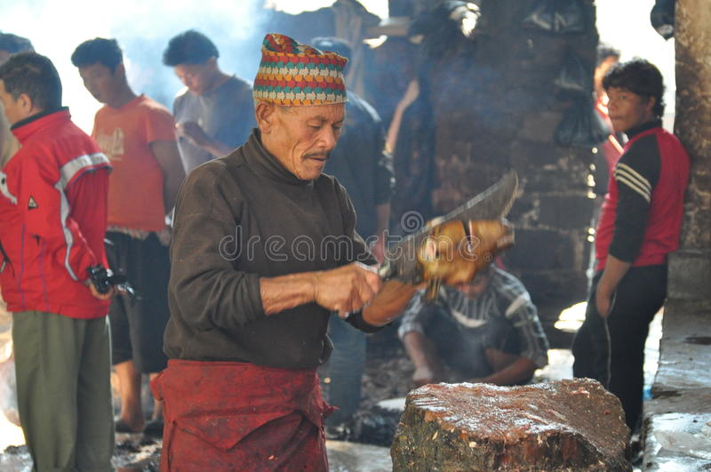 Nepalese butcher royalty free stock photo