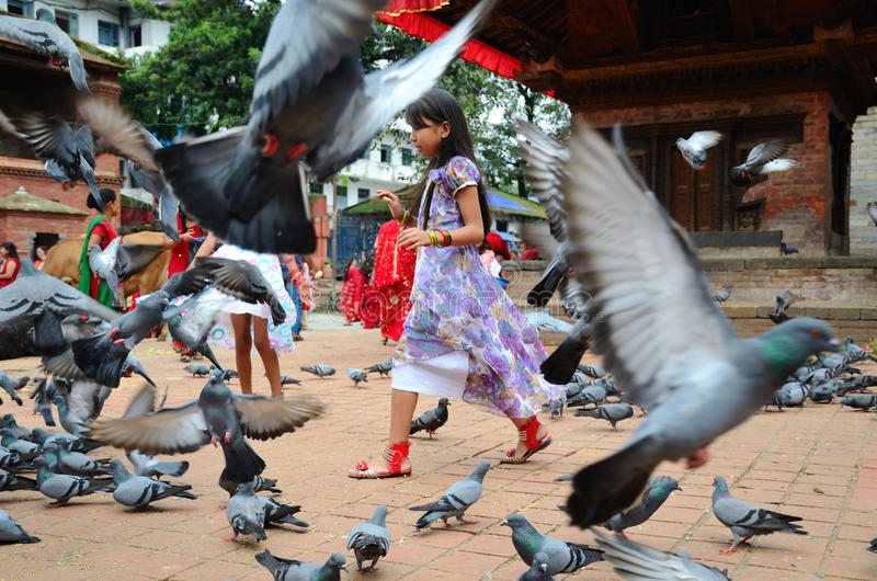Nepalese girl with doves royalty free stock images