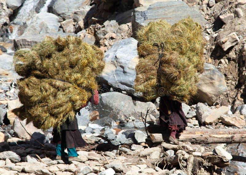 Nepalese mit Heu auf dem zurück- Nepal lizenzfreies stockbild