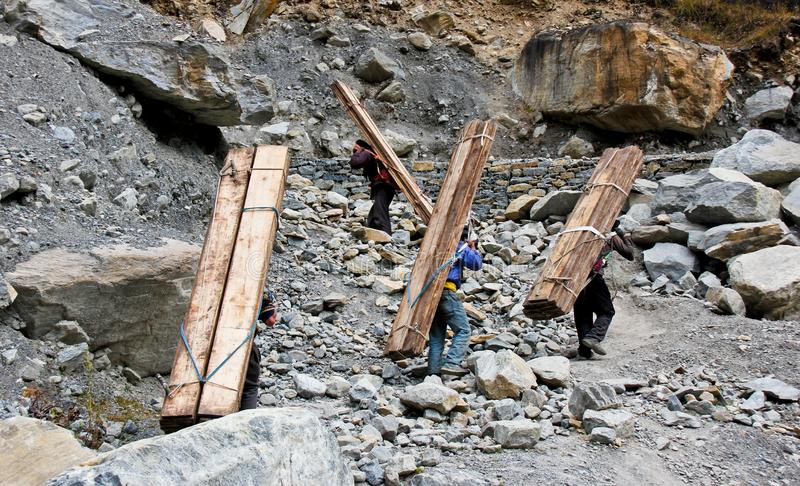 Nepalese people carry heavy wood for construction in Himalaya stock photography