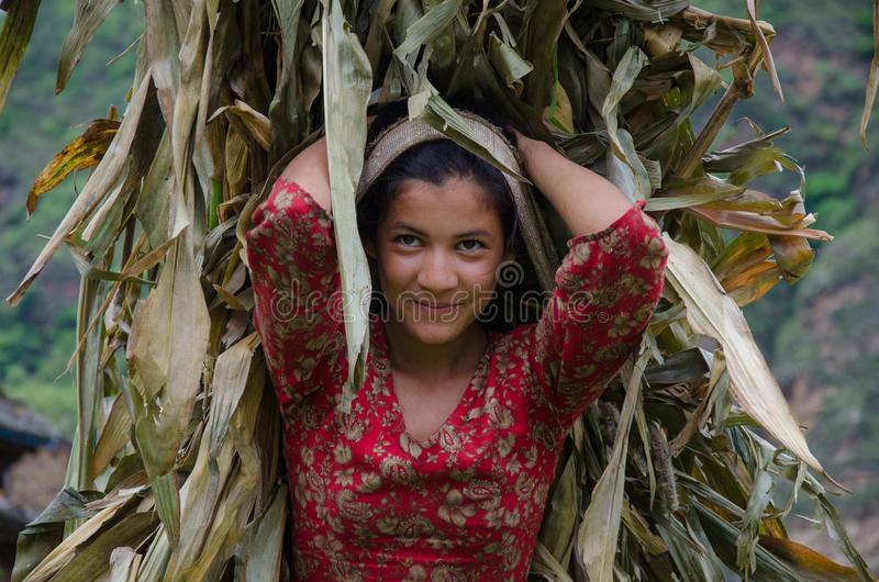Nepalese Smile. The beautiful smile of a young Nepalese farmer stock photos