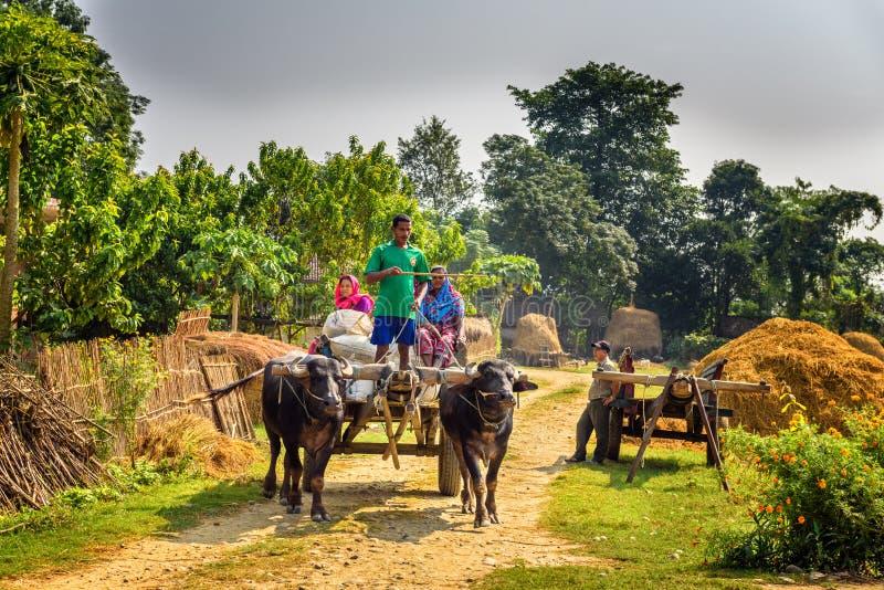 Nepalesische Leute, die auf einen hölzernen Warenkorb befestigt reisen stockfotos