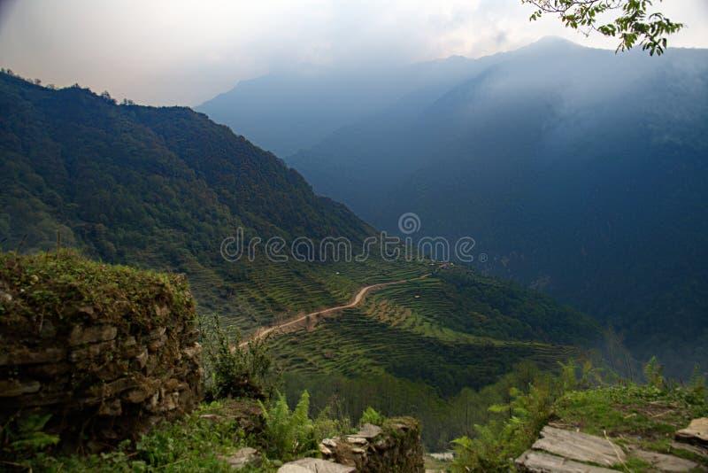 Nepalesiska terrasser A arkivbild
