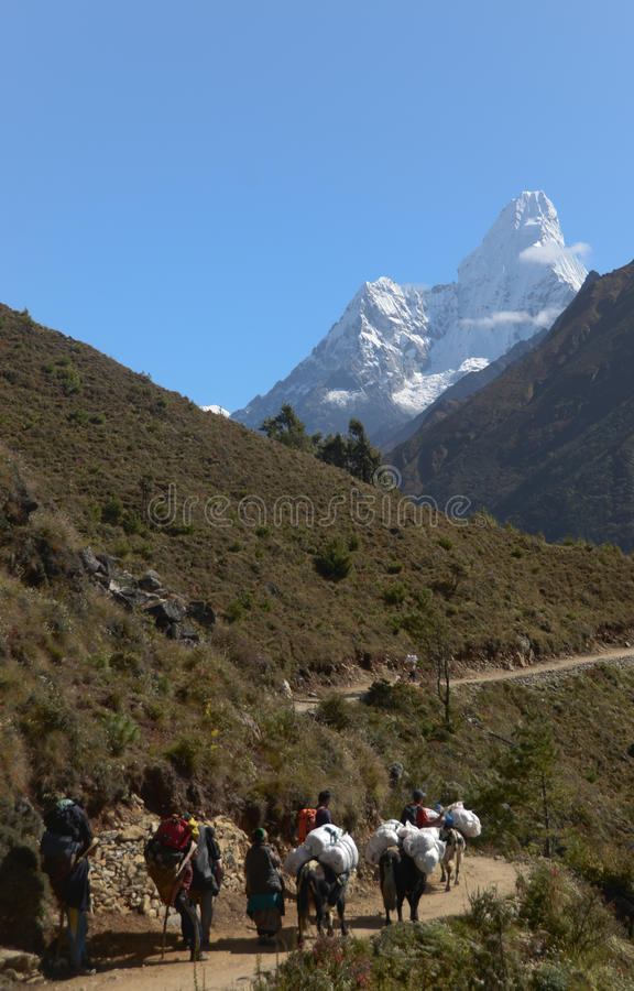 Download Nepali Porters In The Everest Trail Editorial Image - Image: 22021875