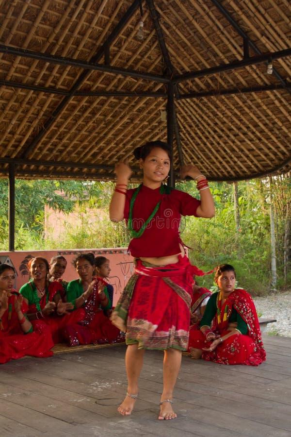 Nepalska kobieta tanczy tradycyjnego tana w Chitwan, Nepal obrazy royalty free