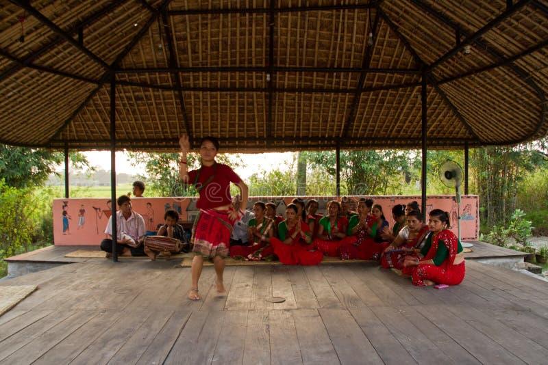 Nepalska kobieta tanczy tradycyjnego tana w Chitwan, Nepal zdjęcia royalty free