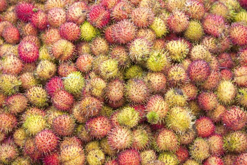 Nephelium lappaceum Rambutanfrucht lizenzfreie stockfotos