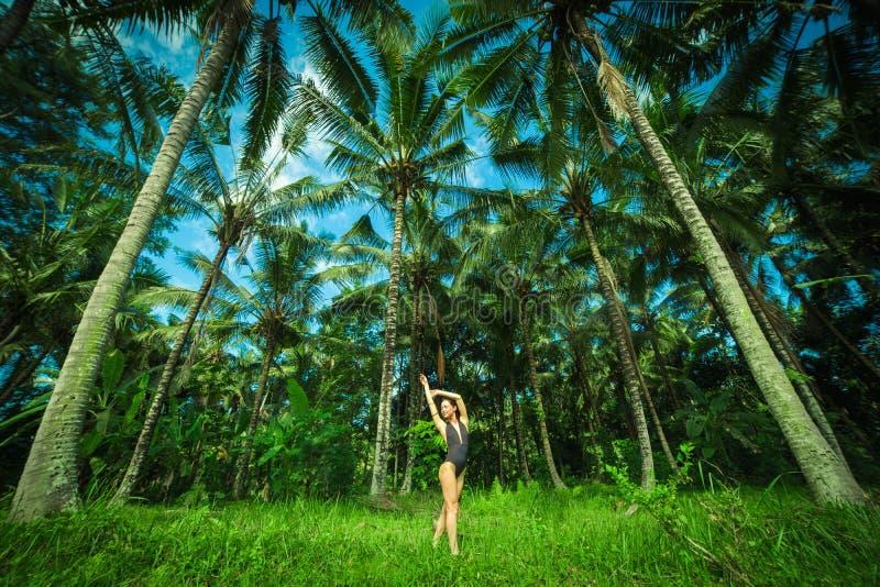 Ner för kropp för härlig brunettwint perfekt stora palmas i Balien Indonesien royaltyfri fotografi