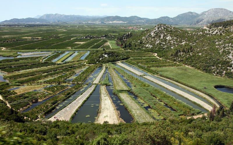 Neretva river basin. In the coastal Dubrovnik–Neretva county of Croatia royalty free stock photos