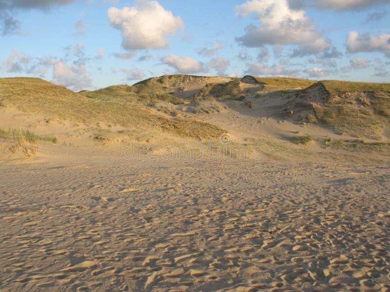 neringa Литвы дюн стоковое изображение
