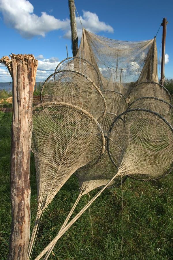 Neringa Nets royalty free stock images