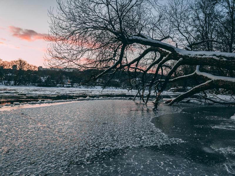 Neris flod under solnedgång royaltyfri bild