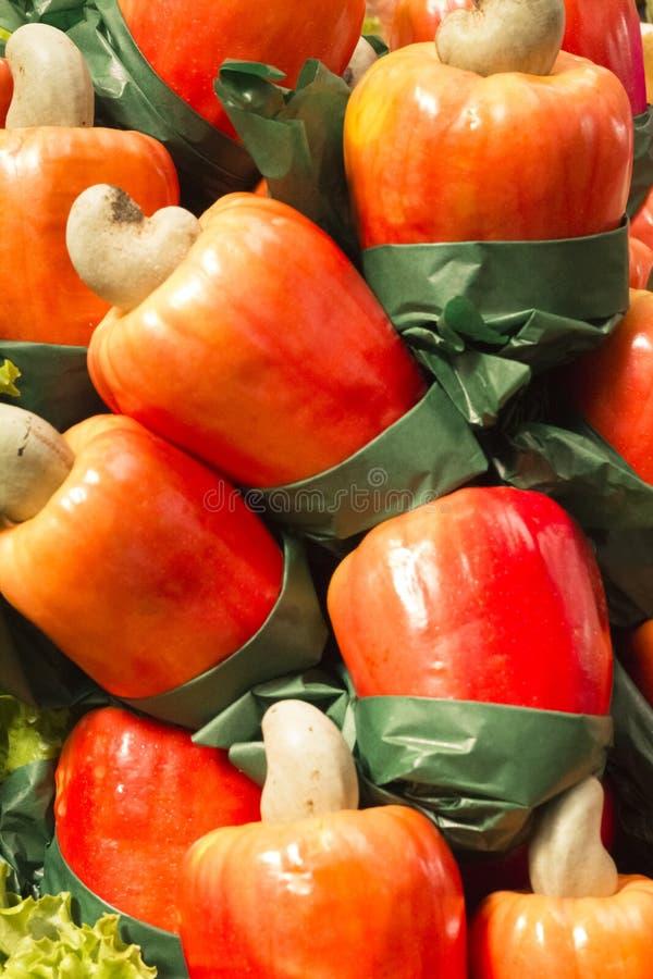 Nerkodrzewu jabłko zdjęcia royalty free