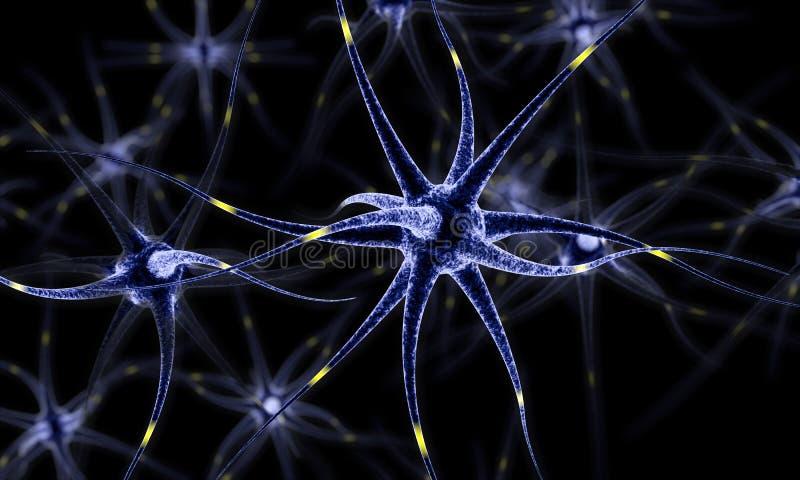 Nerv- nätverk, hjärnceller, mänsklig nervsystem, illustration för Neurons 3d royaltyfri illustrationer