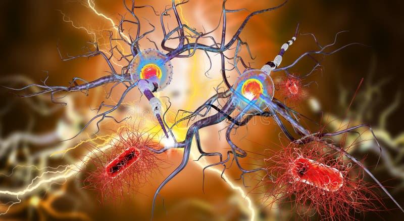 Nervcell och bakterier stock illustrationer