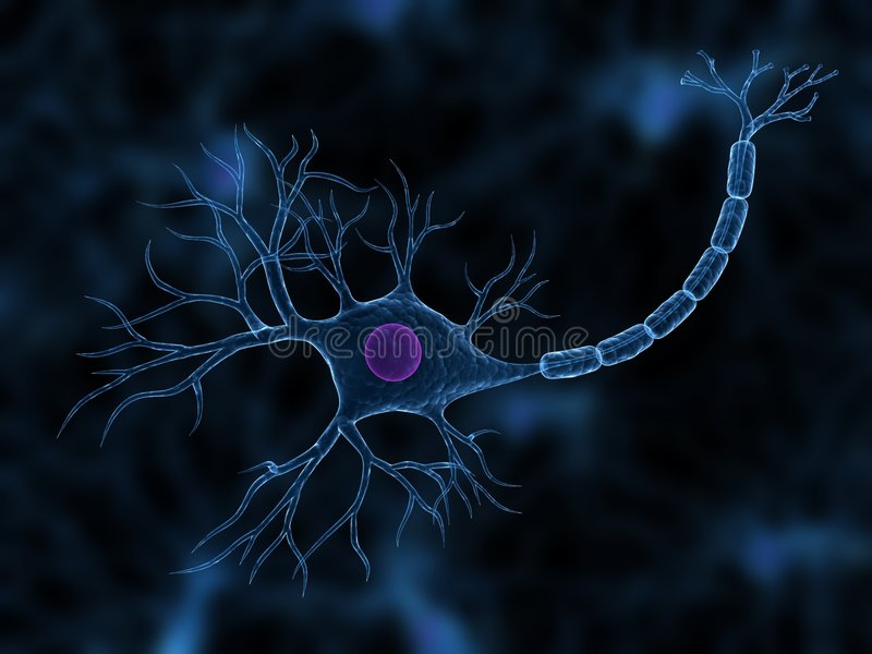 Nerve cell royalty free illustration