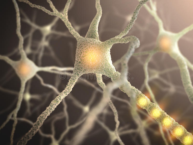 Nerve Cell. Interconnected neurons transferring information with electrical pulses stock images