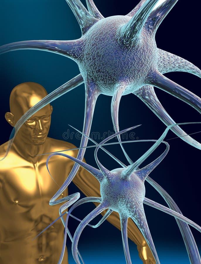 Download Nerve cells stock illustration. Image of neurones, computer - 23497656