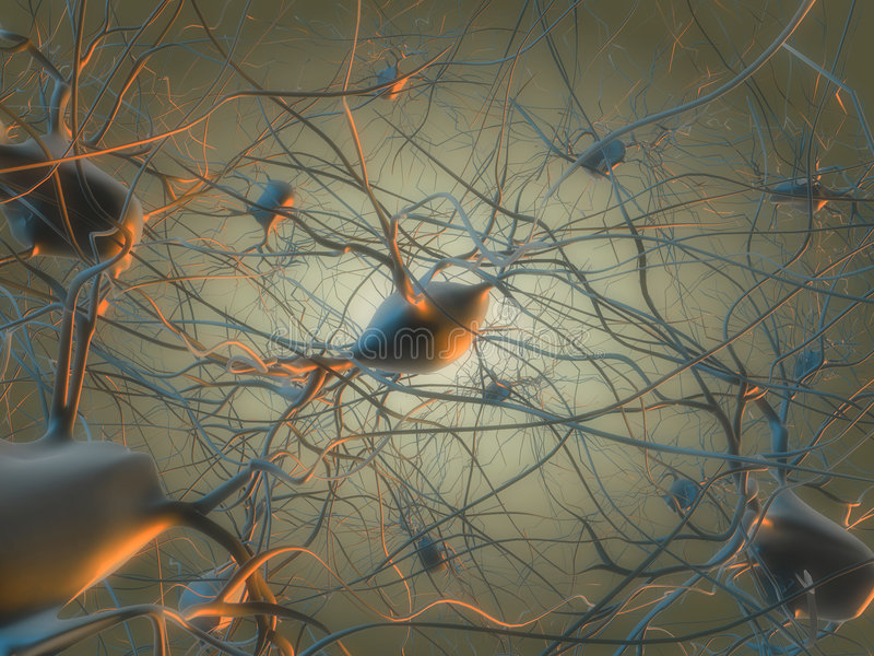 Download Nerve cells stock illustration. Image of head, nucleus - 8854685