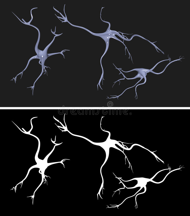 Nerve cells with alpha mask for extraction. Nerve cells with alpha mask for easy extraction vector illustration