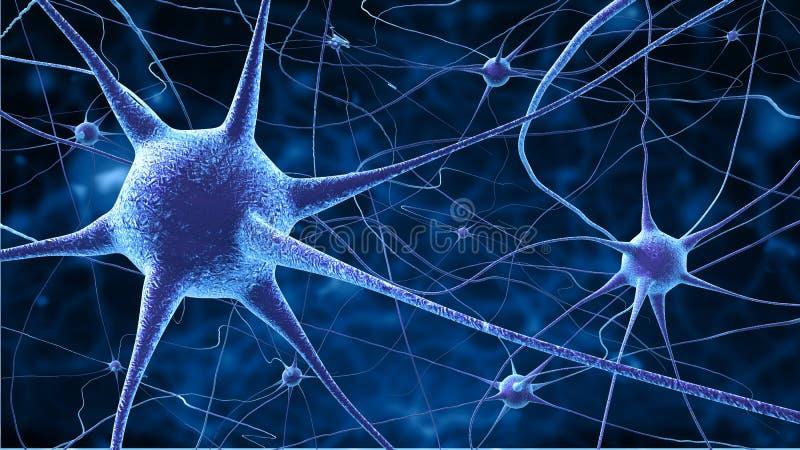 Nerve cells royalty free illustration