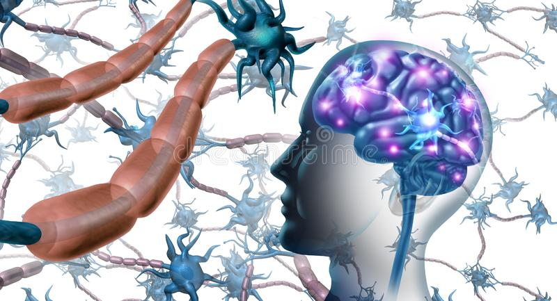 Nerve Cells Inside The Brain. And nervous system anatomy concept as a human neurology and neuron function disorder symbol for multiple sclerosis or alzheimer stock illustration