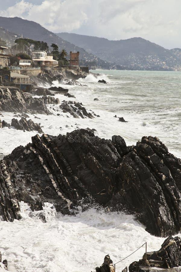 Download Nervi στοκ εικόνα. εικόνα από ύδωρ, ιταλικά, πύργος, lather - 13180369