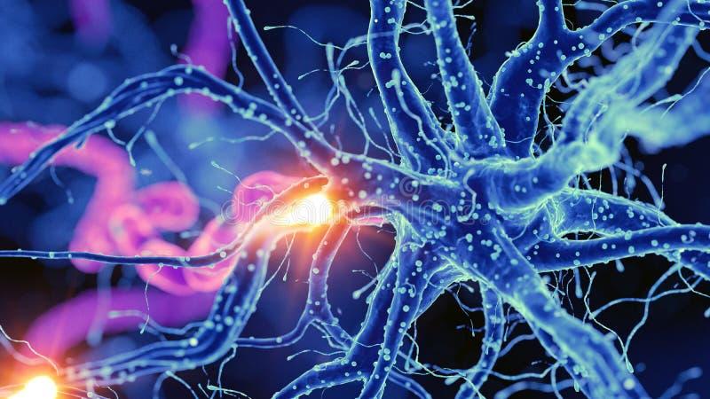 Nerw komórka ilustracja wektor