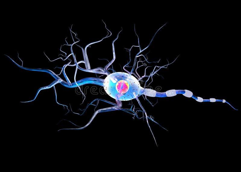 Nerw komórki odizolowywać na czarnym tle ilustracja wektor