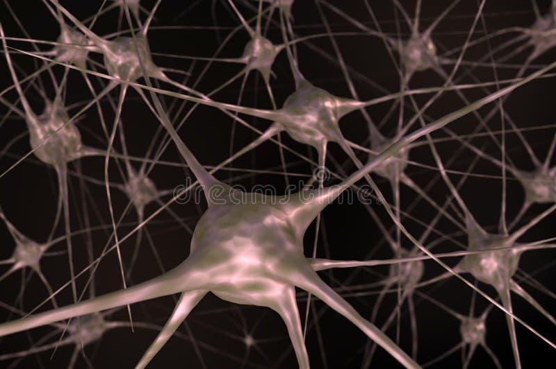 Nerw komórki w mózg ilustracji
