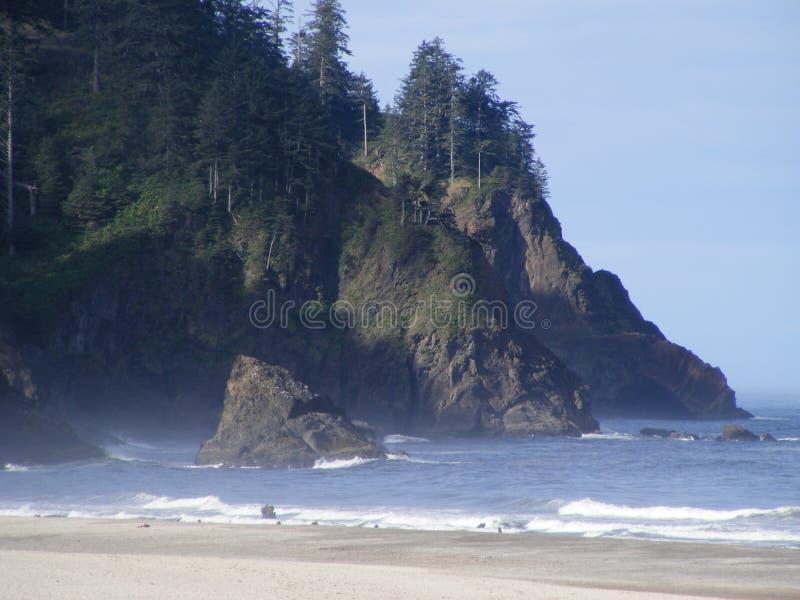从Neskowin的小瀑布顶头俄勒冈海岸 免版税图库摄影