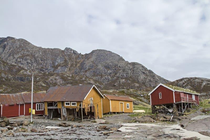Nesland foto de archivo libre de regalías