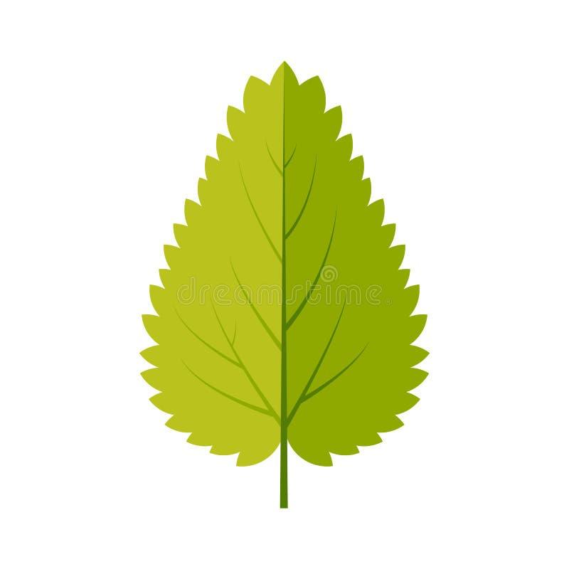 Nesselblattikonenvektor-Designillustration Freie Abgaben-Bilder stock abbildung