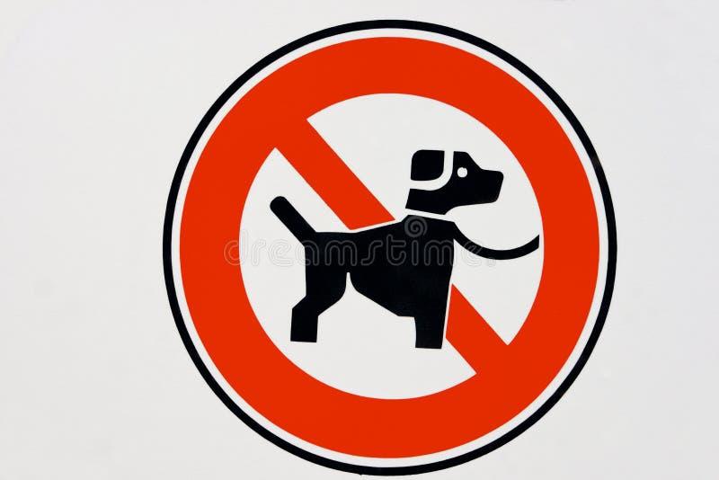 Nessun cane. immagini stock libere da diritti