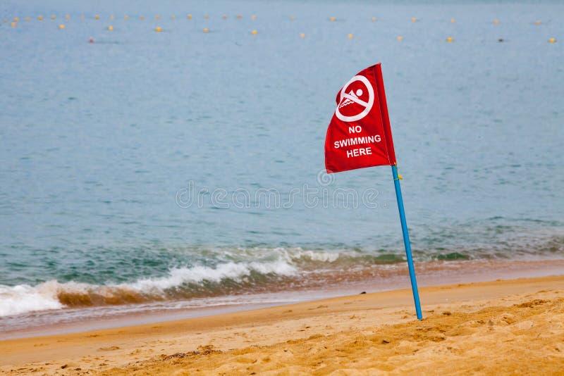 Nessun nuoto qui della bandiera rossa sulla spiaggia fotografia stock libera da diritti