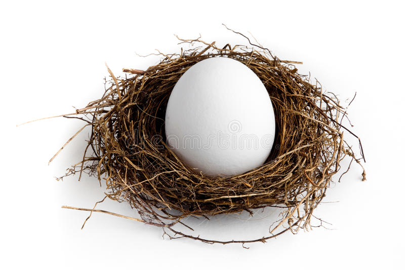 Download Nest Egg stock photo. Image of white, plan, savings, finance - 15659948