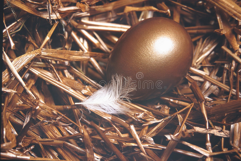 Nest Egg Stock Photography
