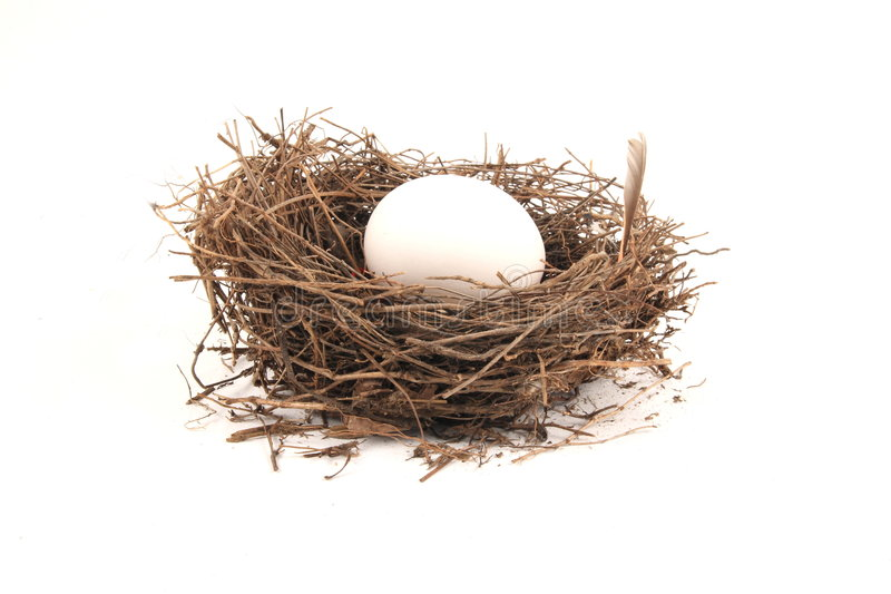 Download Nest Egg stock image. Image of money, retirement, concepts - 3344213
