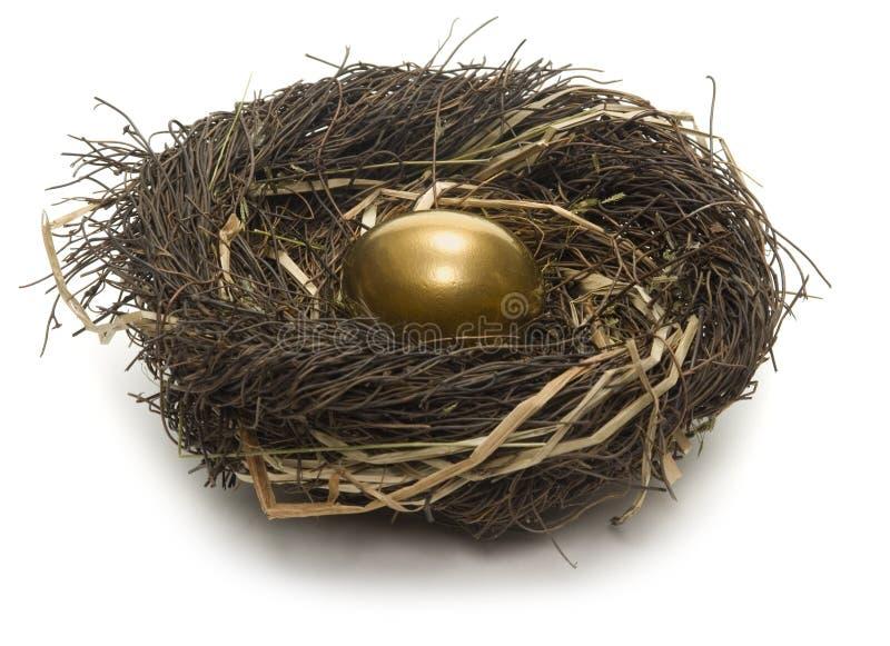 Nest Egg. Golden egg inside a nest on white background royalty free stock images