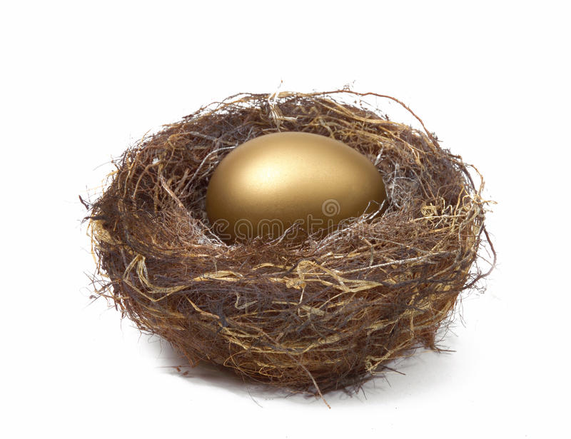 NEST EGG SAVING ESTATE RETIREMENT FUND FINANCIAL WEALTH PLANNING. Financial Planning and Wealth Management Golden Nest Egg, Saving for Retirement Estate Fund stock image