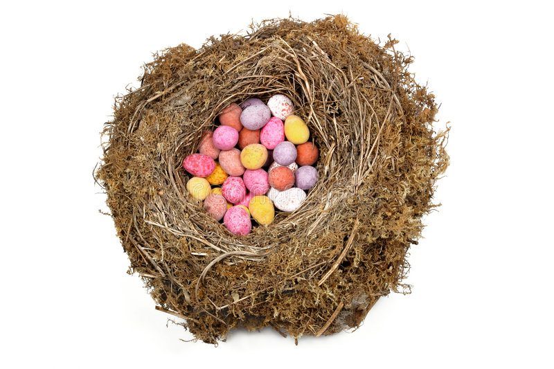 Download Nest Eggs stock image. Image of banking, baby, birds, easter - 505137