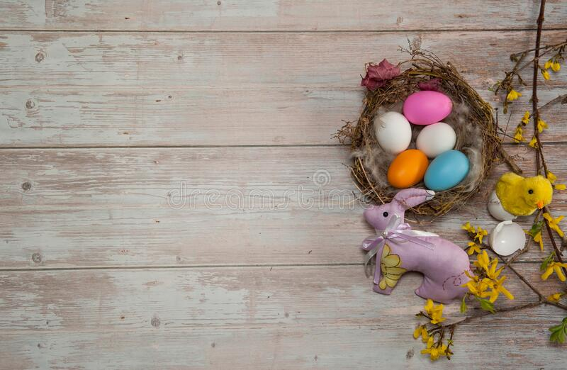 Nest with eggs, chick, pink easter bunny and Forsythia branches with flowers on a wooden background. stock image