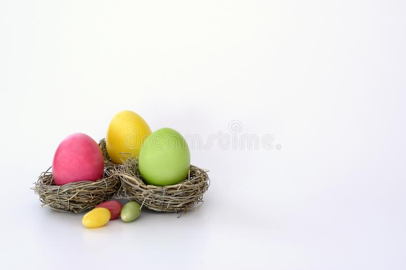 Nest with eggs stock photography