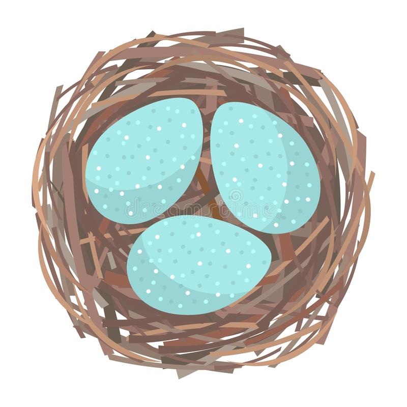Nest with eggs vector illustration