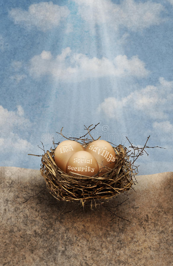 Nest eggs stock images