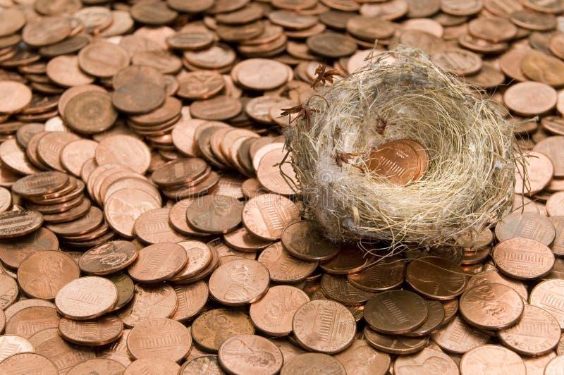 Download Nest en pence stock afbeelding. Afbeelding bestaande uit pence - 29512709