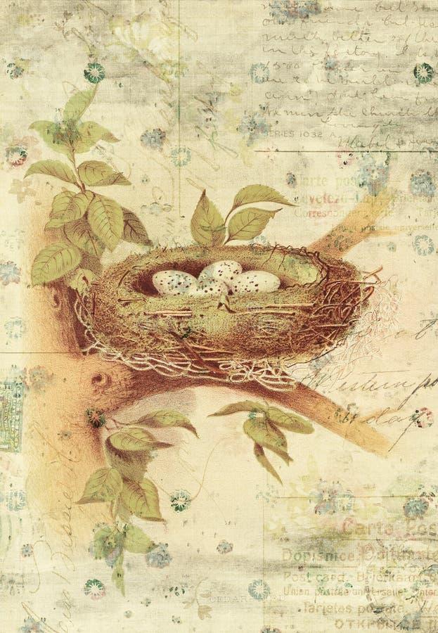 Nest en Vogel de Muurkunst van de Eieren Botanische Uitstekende Stijl met Geweven Achtergrond stock illustratie