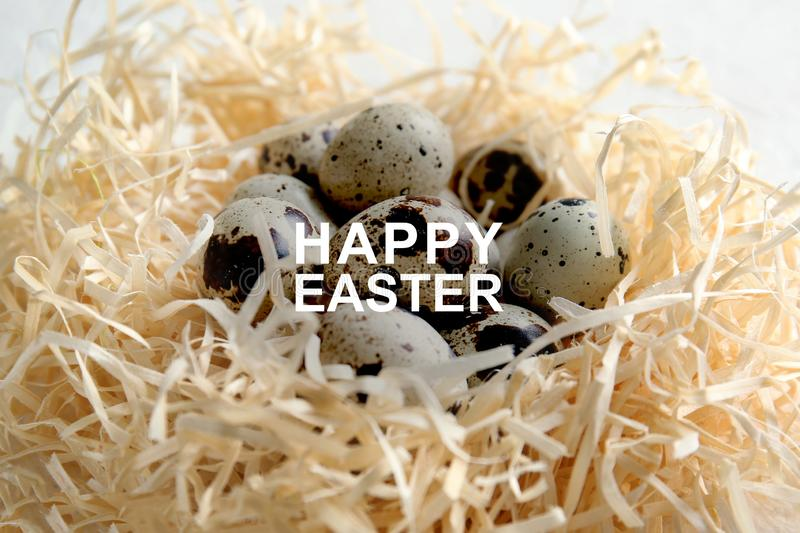 Nest with fresh quail eggs on table, closeup royalty free stock photo