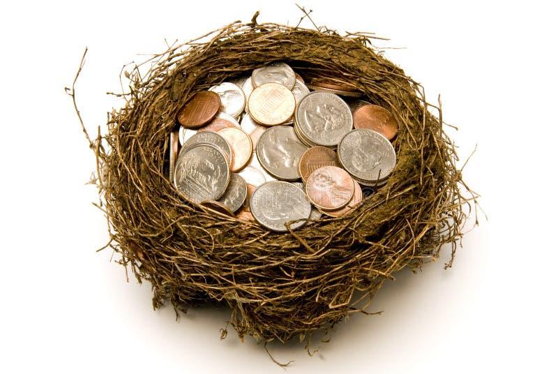 Nest Full of Money for Savings stock photos